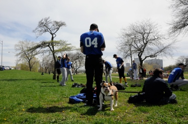 CHICAGO—Baxter the bulldog may not officially be the Angel's Envy Chicago Metropolitan Sports Association softball team's official mascot, but he and his owner, Kevin Murphy, 46 (right), have been coming to the games near Montrose Beach since Murphy's partner, Jason Clowers, 28 (center), joined last year.